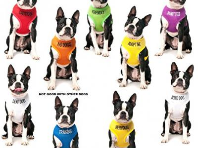 FRIENDLY-Green-Colour-Coded-Non-Pull-Dog-Harness-known-As-Friendly-PREVENTS-Accidents-By-Warning-Others-Of-Your-Dog-In-Advance-0-5